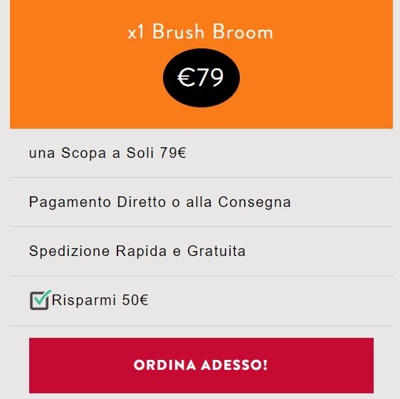Brush Broom