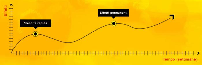 Mass Extreme come funziona effetti